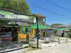 Aguacate - La Casa de Juana - La Paloma