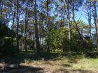 Terreno M40 S11 - Punta del Diablo