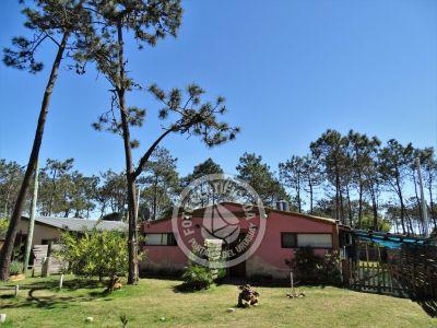 Punta Avellaneda