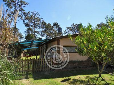 Punta Avellaneda - 1