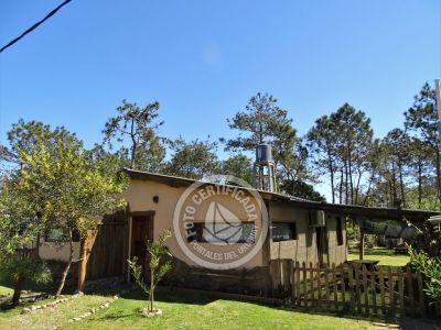 Punta Avellaneda - 2