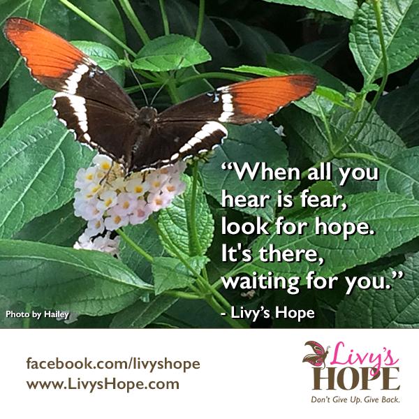 Livy's Hope