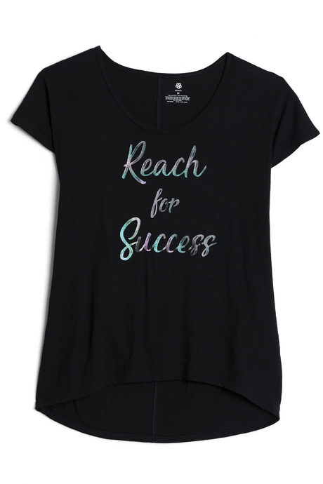 Reach for success pinup