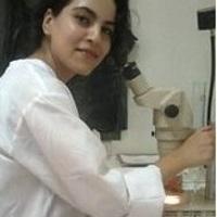 Amira Chaabane