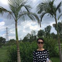 Bingjin Li