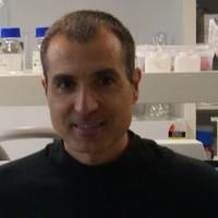 Fernando Maestre
