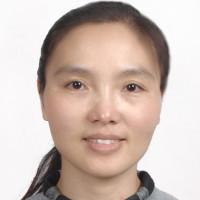 Hongxing Zhang
