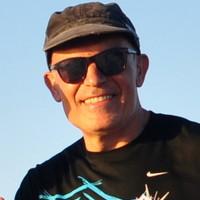 José Pérez-Ortín