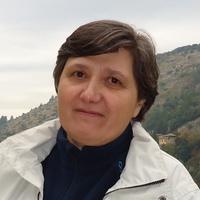 Maria J. Sanz