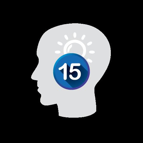 pelco experience 15 icon
