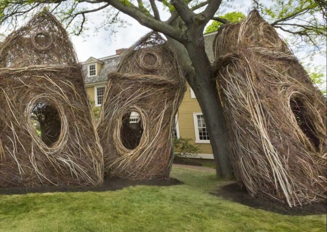 Stickwork: Patrick Dougherty