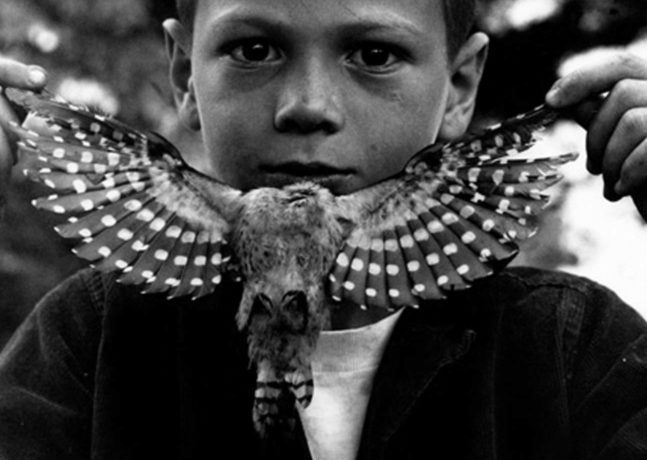 The Mind's Eye: 50 Years of Photography by Jerry Uelsmann