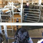 We love the Harnish farm!