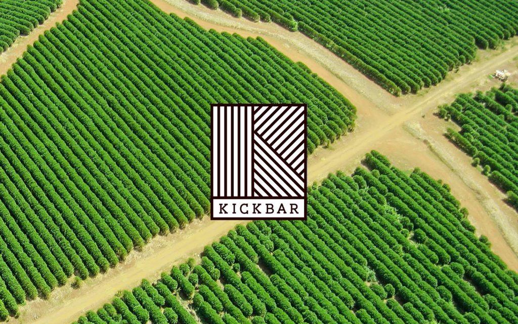 Kickbar packaging and identity