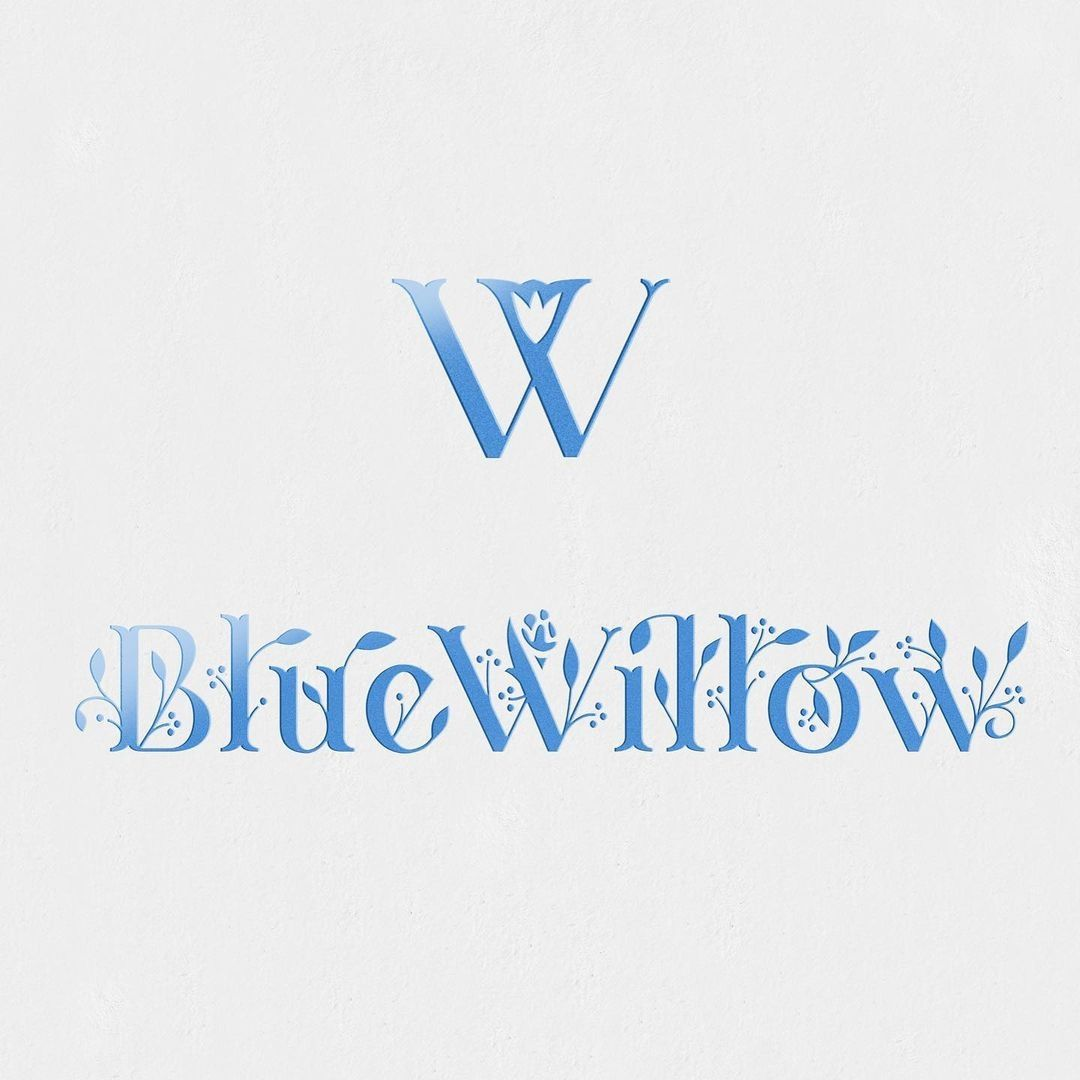 Blue Willow Branding by Satellite Office