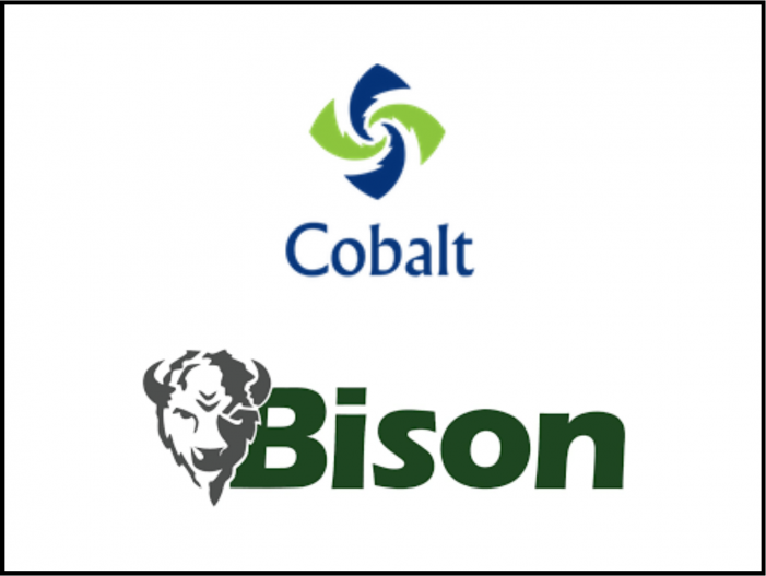 Blue Sage Exits Cobalt Environmental