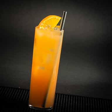 hairy-navel-cocktail-ilona-staller-camshot
