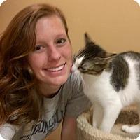 Adopt A Pet :: Malcolm - McDonough, GA