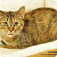 Adopt A Pet :: Kendra - Ortonville, MI
