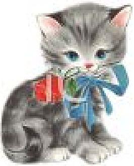 Domestic Shorthair Kitten for adoption in Kennesaw, Georgia - NEW KITTENS!