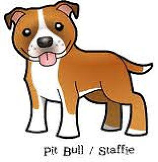 Pit Bull Terrier Mix Dog for adoption in San Bernardino, California - URGENT on 10/8 SAN BERNARDINO