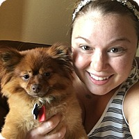 Adopt A Pet :: chachi - conroe, TX