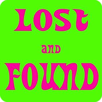 Domestic Shorthair Cat for adoption in Westampton, New Jersey - LOST & FOUND CATS