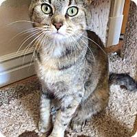 Adopt A Pet :: Martha - Boise, ID