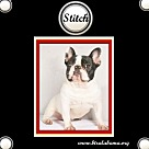 Adopt A Pet :: Stitch