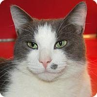 Adopt A Pet :: Jacob - Centre Hall, PA