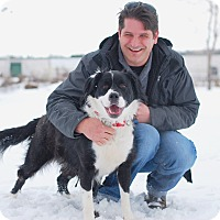 Adopt A Pet :: Duchess-Prison Dog - Elyria, OH