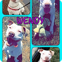 Adopt A Pet :: Wendy - Yuba City, CA