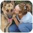 Photo 4 - German Shepherd Dog Dog for adoption in Los Angeles, California - Monty von Montoya