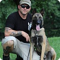 Adopt A Pet :: Jago - Wattertown, MA