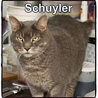 Adopt A Pet :: Schuyler - Crandall, GA