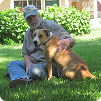 Adopt A Pet :: Zoe - Wilmington, DE