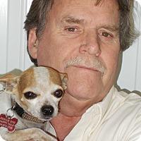 Adopt A Pet :: Woody - Plain City, OH