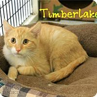 Adopt A Pet :: Timberlake - Covington, LA