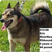 Adopt A Pet :: Eric - RESCUED! - Zanesville, OH