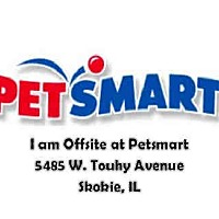 Adopt A Pet :: A166665 - Chicago Ridge, IL