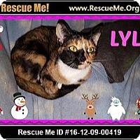 Adopt A Pet :: Lyla - Highland, MI