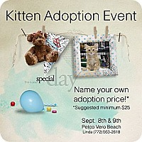 Adopt A Pet :: KITTEN ADOPTION EVENT - Vero Beach, FL