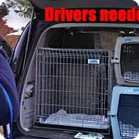Adopt A Pet :: DRIVERS NEEDED! - Blakeslee, PA