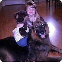 Adopt A Pet :: Trooper - Green Cove Springs, FL