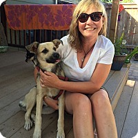Adopt A Pet :: Chloe - Salem, OR
