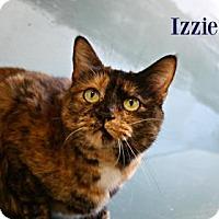 Adopt A Pet :: Izzie - West Des Moines, IA