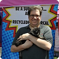 Adopt A Pet :: Will Everett - Sacramento, CA