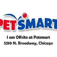Adopt A Pet :: HAM 5 - Chicago Ridge, IL