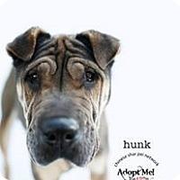 Adopt A Pet :: Hunk - Mira Loma, CA