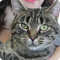 Adopt A Pet :: Georganne - Waupaca, WI